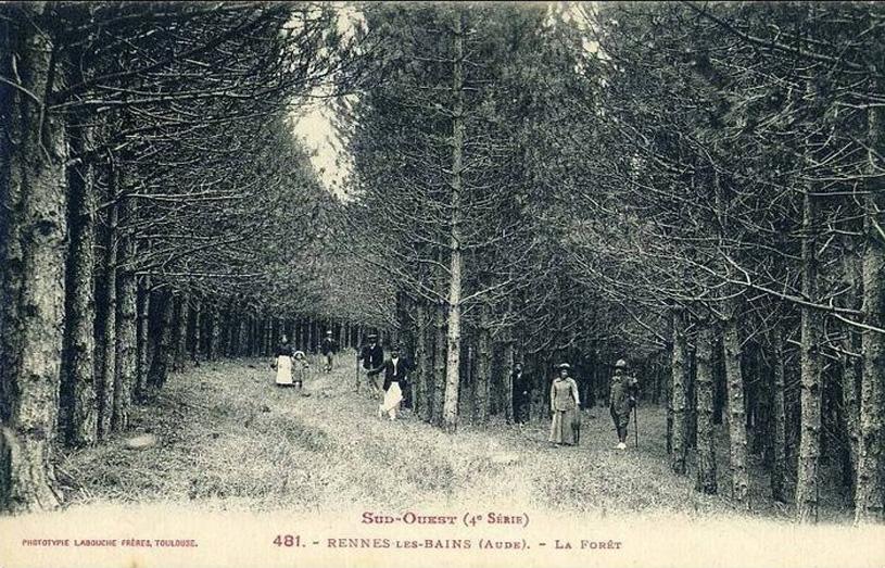 bosques-rennes
